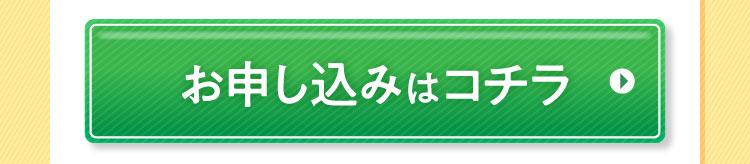お申込みボタン2