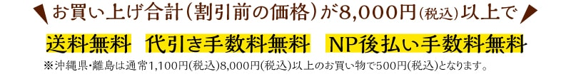 お買い上げ合計(割引前の価格)が8000円以上で『送料無料』『代引き手数料無料』『NP後払い手数料無料』