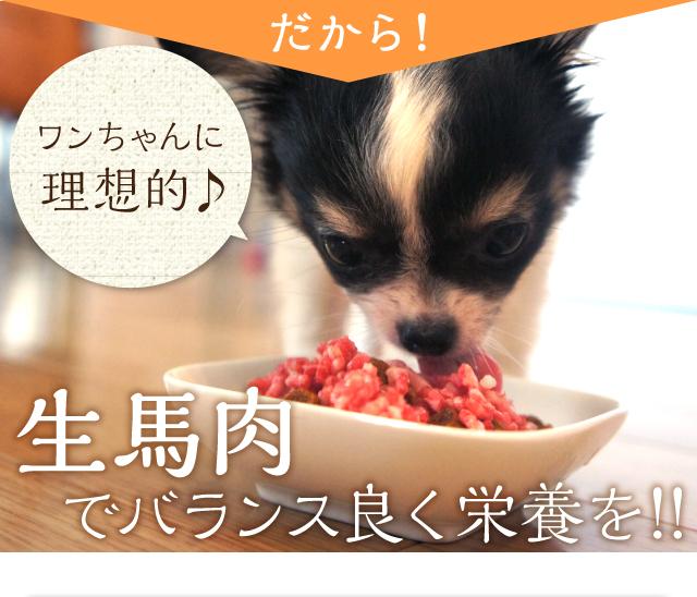 POINT03消化によく、お腹にやさしい!!